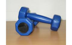 Комплект гантелей 1 кг (2шт) V-SPORT